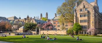 Undergraduate Schools